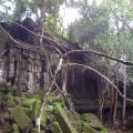 Beng Melea remote temple overgrown